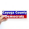 caygua county democrats logo
